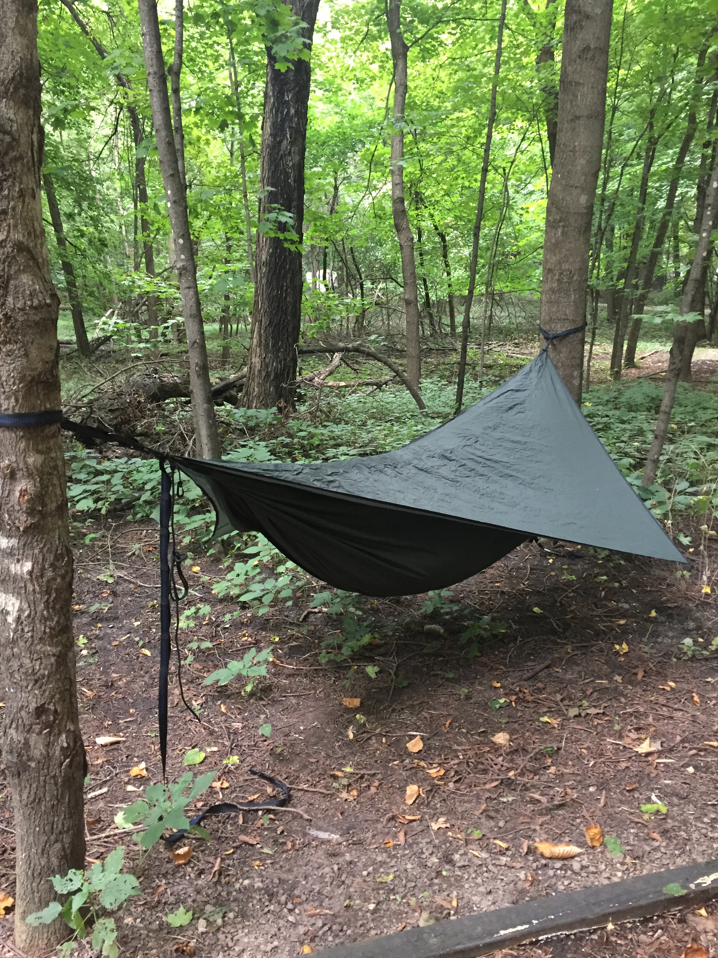 the hammock went up in about 5 minutes faster than the big agnes ul1 flycreek tent  i used my eno straps and carabiners since i couldn u0027t read the     myre big island state park and hennesey hammock gear review      rh   wanderingpine
